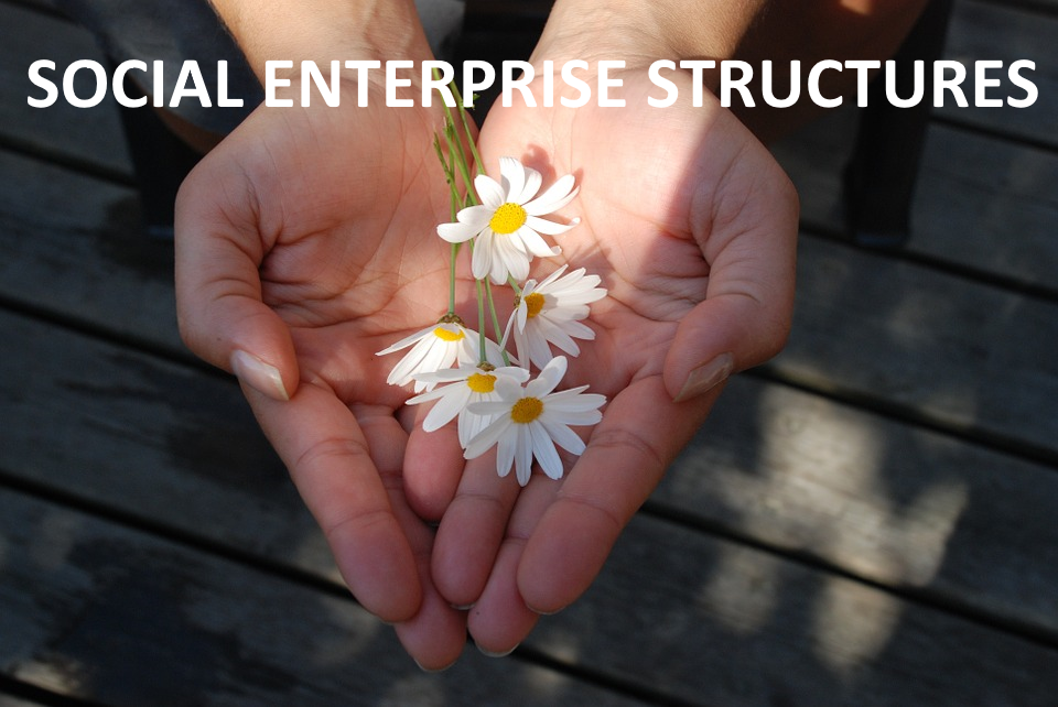Social Enterprise Structures