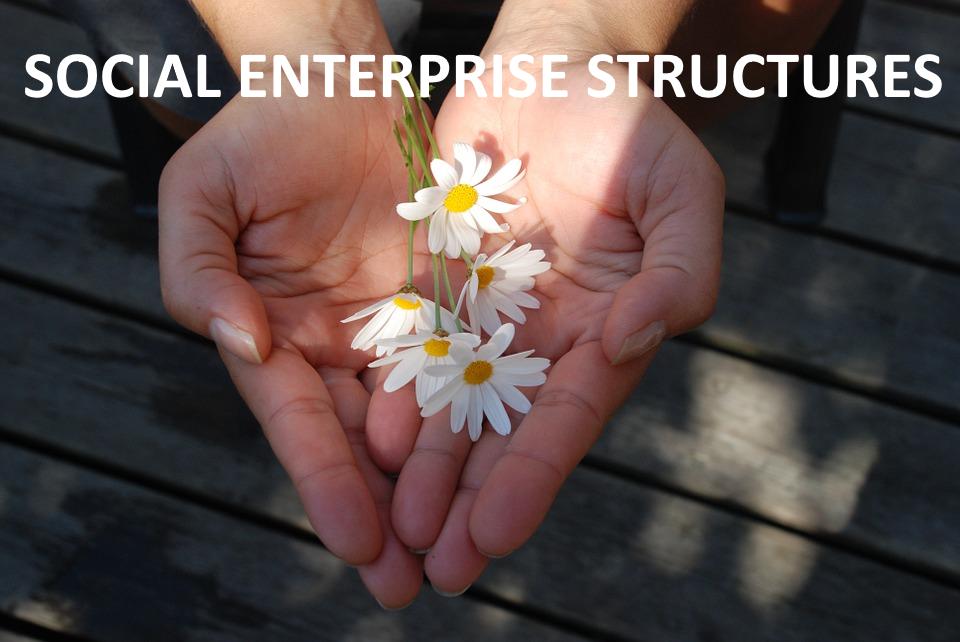 Social Enterprise Structures